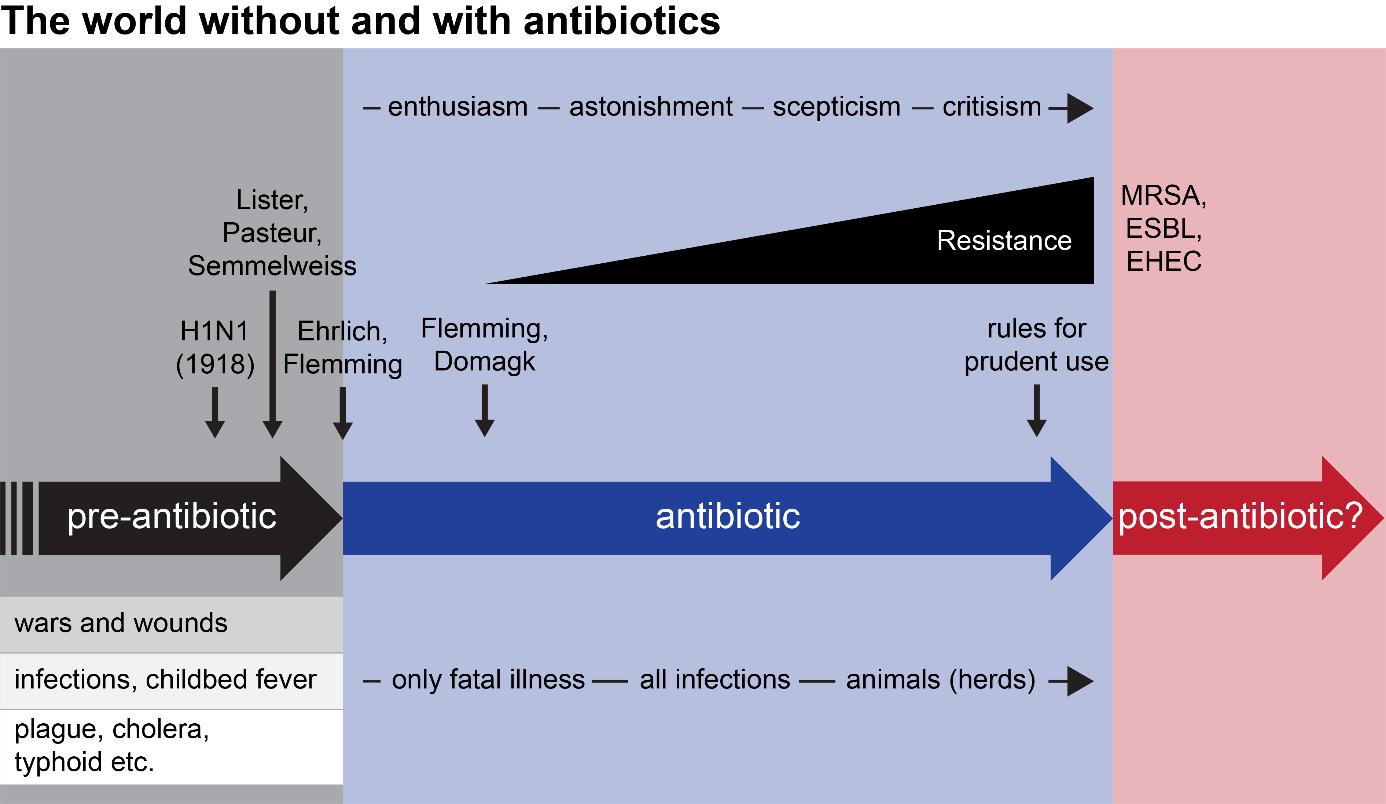 畜牧业的抗菌素耐药